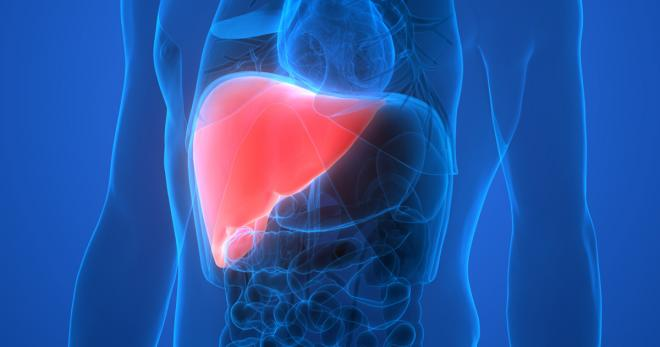 What You Need To Know About This Silent Liver Disease Called Nash Get Healthy Stay Healthy